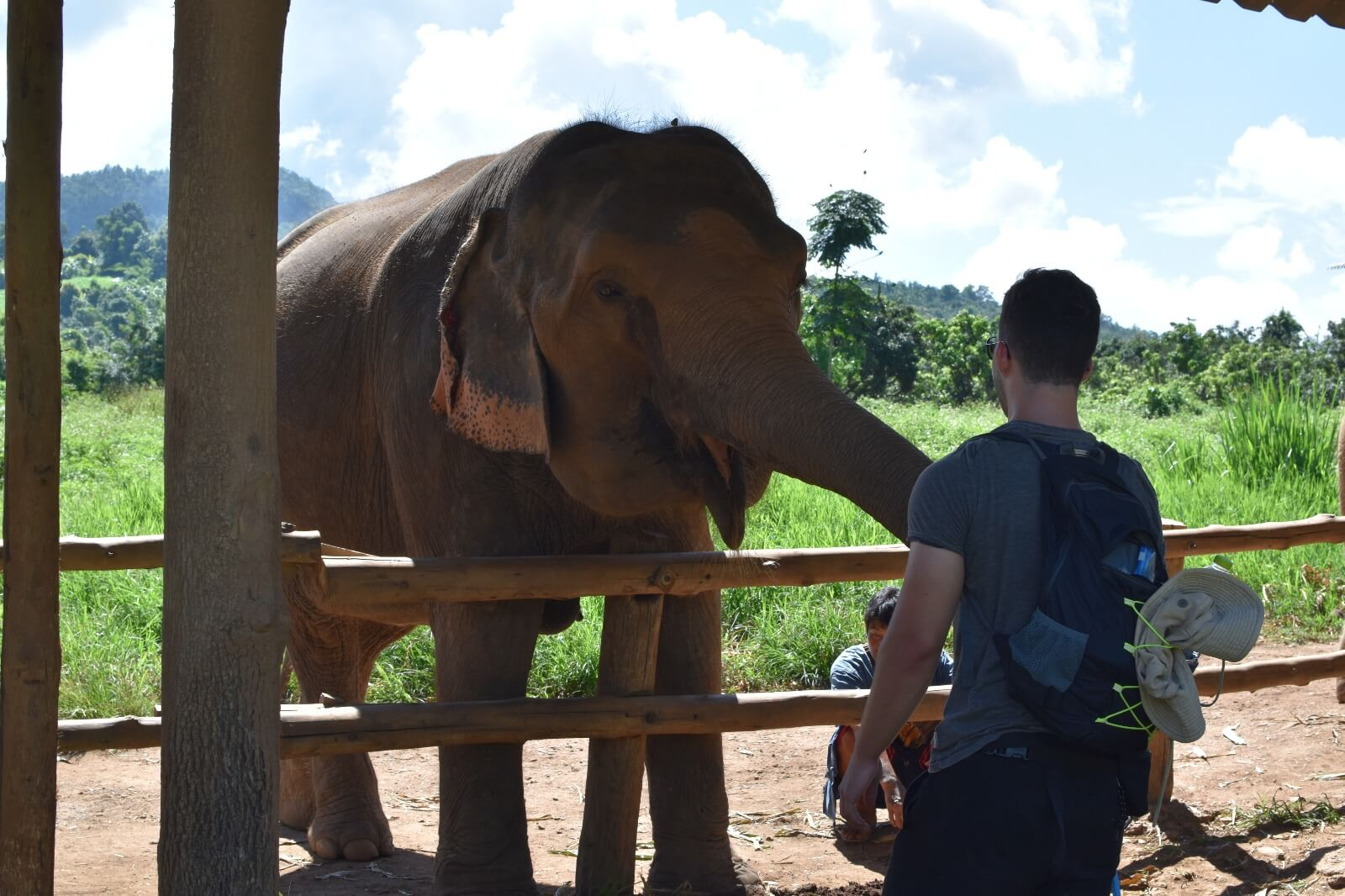 backpacker füttert elefant in chiang mai mit bananen im elephant nature park südostasien-reiseblog ticket im rahmen der reisevorbereitung südostasien gebucht